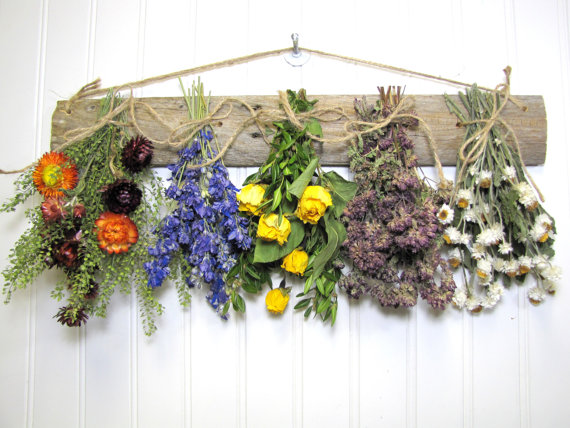 Dry Hanging Flowers